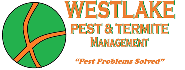 Westlake Pest & Termite Management